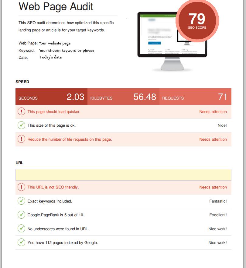 Free SEO Audit Tool Generated Report